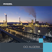 Orascom Construction Industrie Algérie
