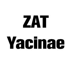 ZAT Yacine