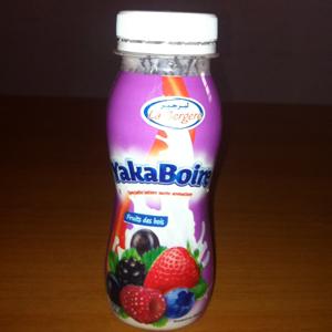 Yaourt aromatisé goût fruits des bois 170 Gr