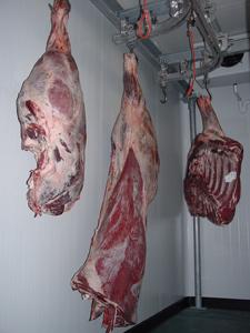 Viandes de boucherie Halal
