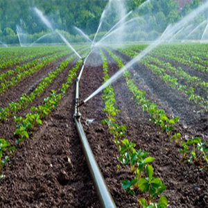 Tube irrigation