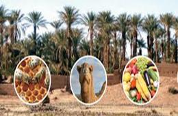 10e salon de l'agriculture saharienne et steppique