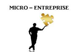 Micro-entreprises