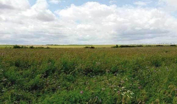 Foncier agricole : la récupération des terres va se poursuivre