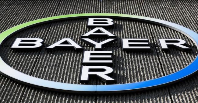 Bayer maintient sa strat&eacutegie en Alg&eacuterie