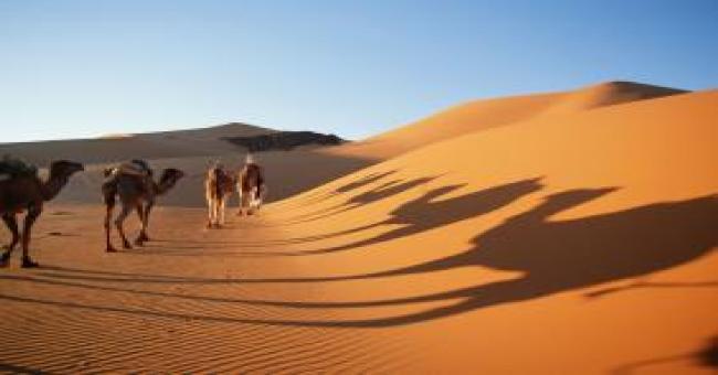Algérie-Jordanie: renforcement des échanges dans le tourisme et l'artisanat