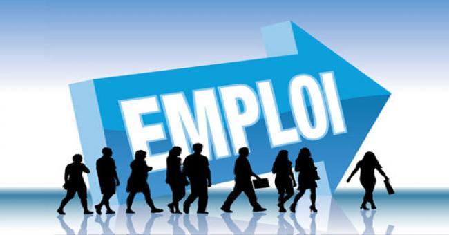 Le secteur privé emploie 6,95 millions de travailleurs