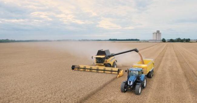 L'Algérie va acheter 360.000 tonnes de blé