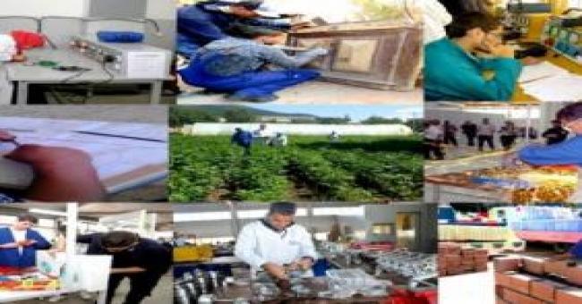 Formation professionnelle:sept nouvelles spécialités pour une inscription en Technicien