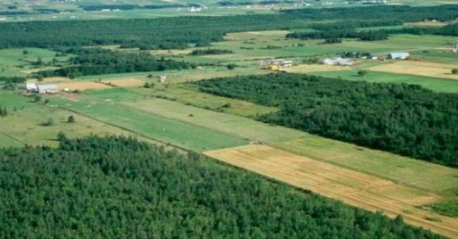 Foncier agricole : Bientôt, un nouveau recueil de données statistiques