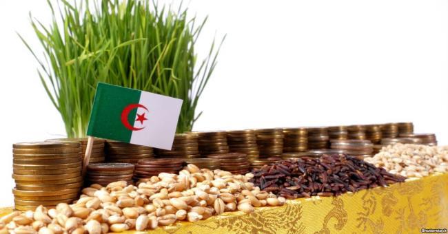 Après une production élevée de grain...Algériens: les prix baissent-ils?