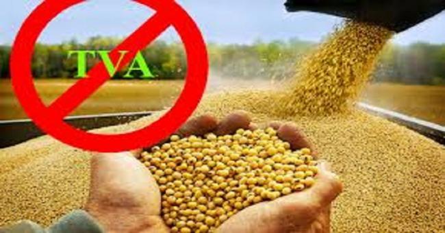 Alimentation de bétail : les opérations de vente de l'orge et du maïs exemptées de la TVA