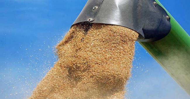 Intérêt de l'Algérie au blé Russe