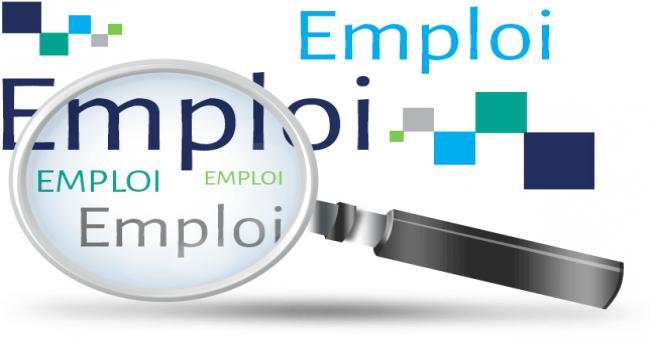 La stratégie algérienne de promotion de l'emploi , évoquée par l'ONU